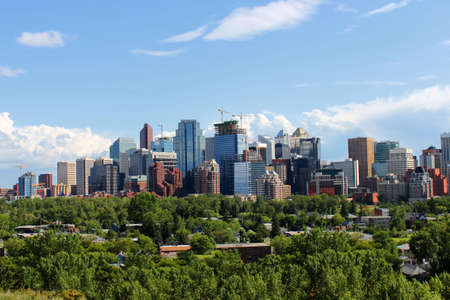 Skyline view of highrise office and apartment buildings in Calgary, Alberta, Canada with greenery in the foreground