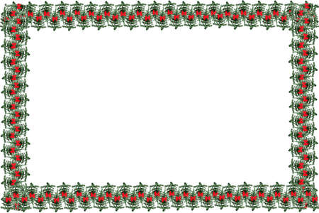 greeting christmas: Green pine  christmas tree with red festive bows as a greeting card  to use as a background, frame or border Stock Photo