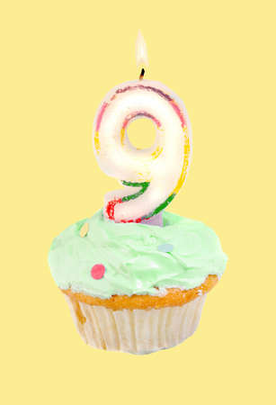 ninth: ninth birthday cupcake with green frosting on a yellow background