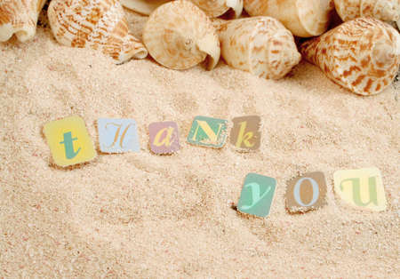 thanking: thank you on sand with shells in the background, great for postcard or greeting