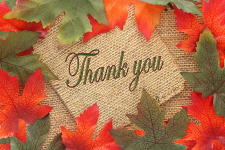 Fall background with green and oranges leaves covering twin rope paper with thank you written, great for a greeting card or note