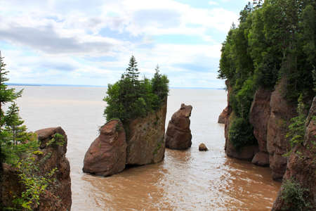 Muddy water with the high tide overlooking the Flowerpot rocks at Hopewell Rocks, New Brunswick, Canada
