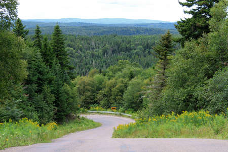 as far as the eye can see: Winding Road with trees in the background for as far as the eye can see along a scenic route along the Bay of Fundy in New Brunswick, Canada