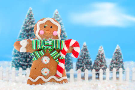 Decorated christmas tree forest with white picket fence in snow ready for christmas with a happy gingerbread man in the front