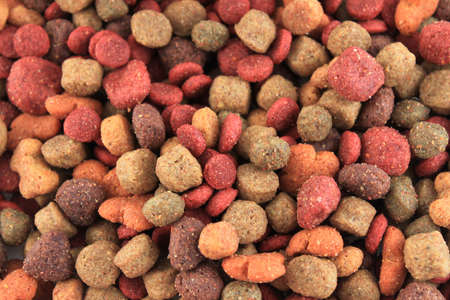 with bits: Bits of dog food as a textured background Stock Photo