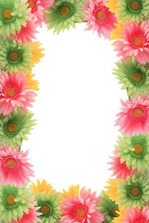 Piuttosto colorato gerber daisy frontiera o telaio con i colori della primavera su sfondo bianco Archivio Fotografico - 8931886