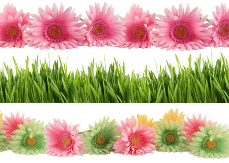 Set of three different borders of green grass, and colorful  gerber daisies