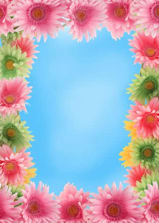 Piuttosto colorato gerber daisy frontiera o telaio con i colori della primavera sullo sfondo del cielo blu Archivio Fotografico - 8931890