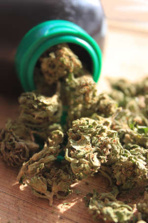 bud weed: Green prescription cannibis spilling out of a bottle