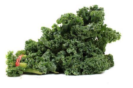 kale: Fresh green leafy kale on a white background