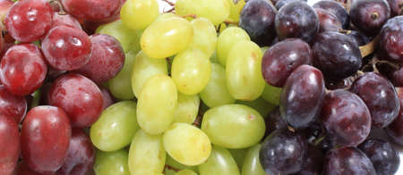 kinds: Image of different kinds of grapes like green and red, close-up