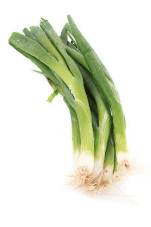 Green onions or scallions  on white background
