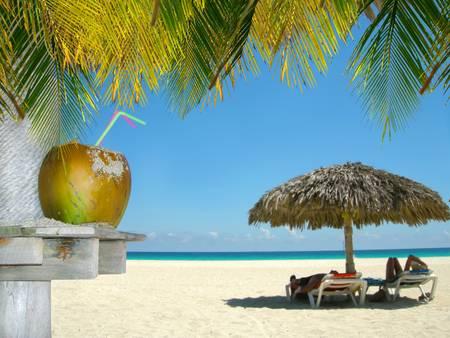 playas tropicales: La gente se relaja bajo chozas tropicales con coco y hojas de palmera en primer plano en una playa cubana Foto de archivo