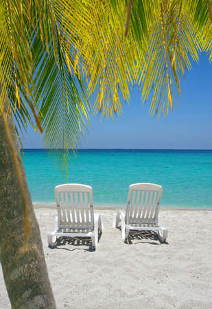 beach chairs: Empty tropical beach chairs on sand at shoreline with palm trees in front  in the Caribbean                       Stock Photo