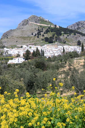 Puebla blanca a white architecture town on the side of the hill in Andalusia, Spain with flowers in front