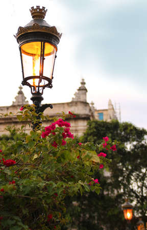 Classic ornamental street light in a plaza of Havana Cuba with tropical flowers photo