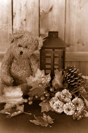 bear berry: Fall or autumn flowers, pine cone and berries with sepia leaves, teddy bear and lantern on a vintage wooden background with shallow depth of field Stock Photo