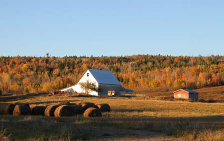 scenic background: Rural farmland with silver barn and hay bales with an autumn scenic background in New Brunswick, Canada Editorial