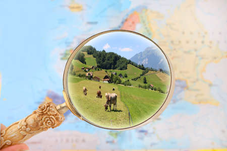 zooming: Zooming on a map of Europe with magnifying glass looking in on cattle in a farm, Switzerland, Europe Stock Photo