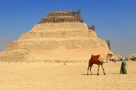 djoser: SAQQARA,EGYPT - JANUARY 31, 2016: Egyptian man walks with his camel in front of the Step Pyramid of Djoser, the first prototype pyramid in Saqqara Egypt