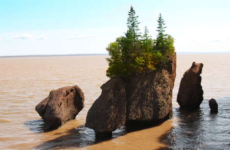nb: Hopewell Rocks in the Bay of Fundy, New Brunswick, Canada in the muddy water at high tide