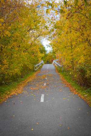 walking paths: Early fall in one of the many trails or paths in the Fredericton New Brunswick area in Atlantic Canada