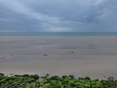 Photo of sea and sandy sea coast in low tide time