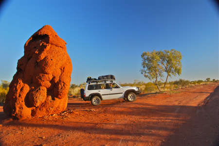 rather large anthill in Australian outback