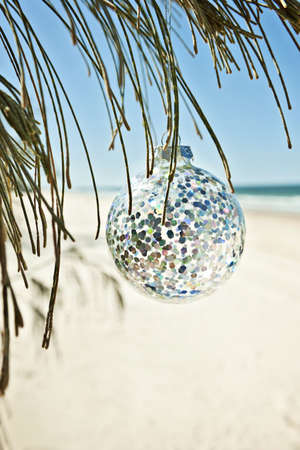 a glass christmas ball hangs from a tree at the beach, vertical comp Stock Photo