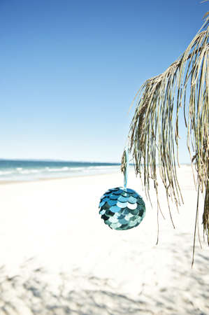 a blue bauble hangs from a tree at the beach, vertical