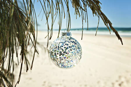 a glass christmas ball hangs from a tree at the beach photo