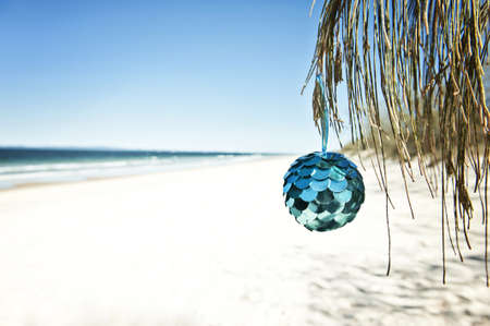 hangs: a blue bauble hangs from a tree at the beach