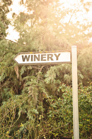 winery sign, with afternoon sunlight