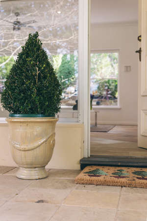 front door with topiary and welcome mat photo