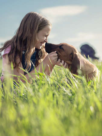 embracing: girl in grassy field kissing her pet puppy dog Stock Photo