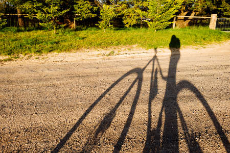 dirt road recreation: shadow of a person on a mountain bike on a dirt track