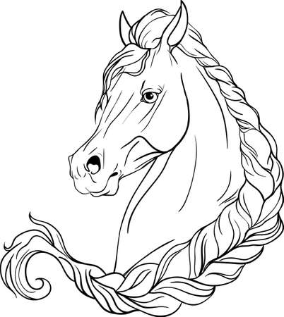 horsehair: Coloring page with a picture of a horse Illustration