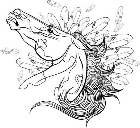 piebald: Coloring page with a portrait of a horse.