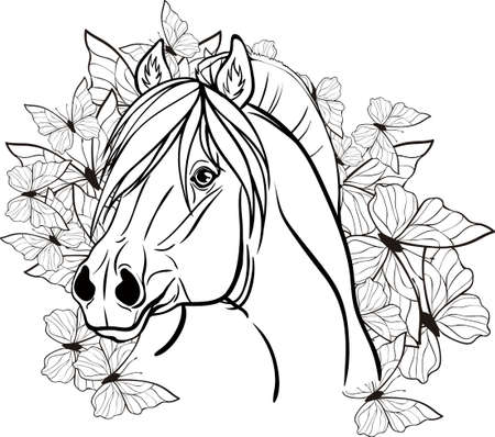 gait: Coloring page with a portrait of a horse.