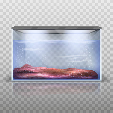 neon fish: Vector aquarium with little water and gruntom.Vektor illustration
