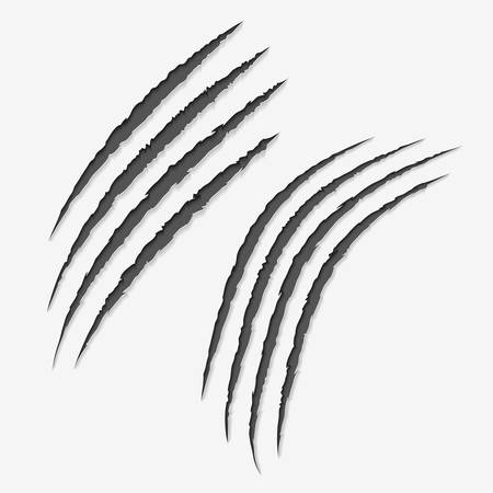 Claws scratches on white background.Scratch left by clawed.vector illustration