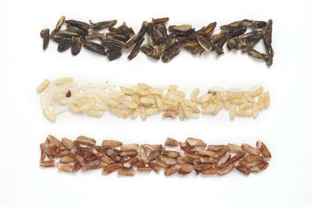 Tres tipos de arroz en filas aislados en blanco. Foto de archivo - 8955912