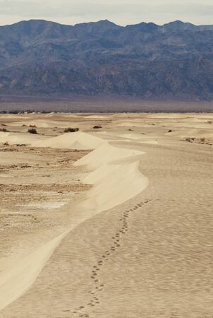 Death Valley Stock fotó