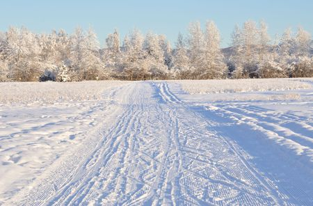 Multi-Use Recreation Trail Alaska Winter  Standard-Bild - 7676760