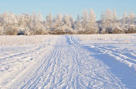 Multi-Use Recreation Trail during Alaska Winter Stock Photo - 7676760