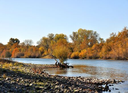 Sacramento River in the Fall Stock Photo - 7676953