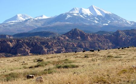 Moab Ranch with view of La Sal Mountains Stock Photo - 8215565