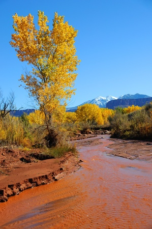 onion valley: Desert Stream in Fall with Snowy Mountains  Stock Photo