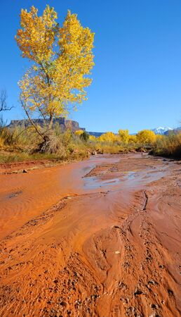 Desert Stream in Fall with Snowy Mountains photo