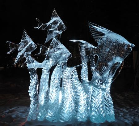 sculpture: Fairbanks, Alaska, March 9, 2010: Tropical Fish Ice Sculpture, 2010 World Ice Art Championships